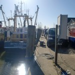 Krabbenkutter im Hafen von Cuxhaven