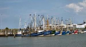 Fischerboote mit Heck zur Mole
